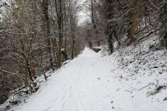 Neckarsteig_Bad Wimpfen_05