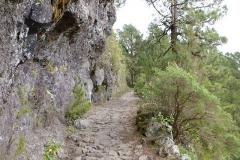 Camino Real zum Reventon-Pass