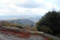Blick_vom Koenigsstuhl nach Heidelberg