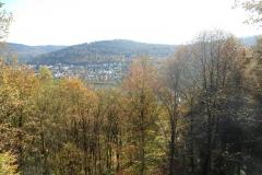 Neckarschleife_Neckargemünd