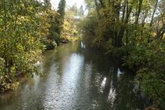 Neckarsteig_Elsenz