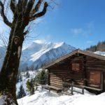 Jochalm,1483m, Tirol